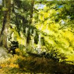 Wald am gusterather Rundweg